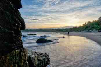 surf2_ants on beach at sunrise