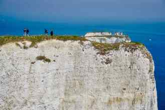 Old Harry9